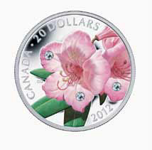 Rhododendron coin