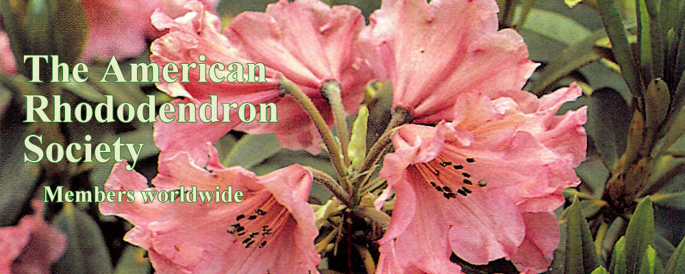 American Rhododendron Society Web Site